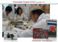 Elektronika Organik